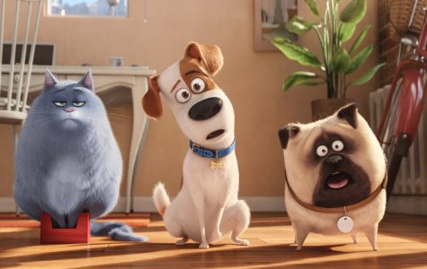 """The Secret Life of Pets"" has fun once the leash is off"