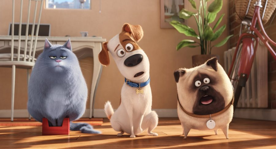 Chloe (voiced by Lake Bell), Max (Louis C.K.), and Mel (Bobby Moynihan) are the three of the stars in