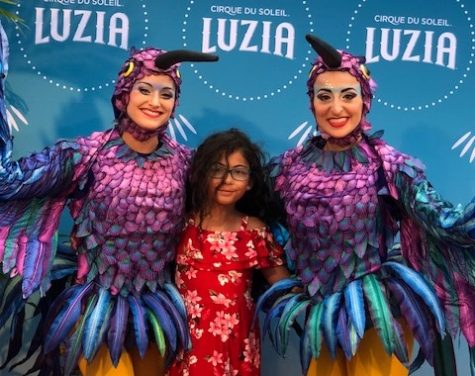 Cirque du Soleil entertains all ages with Luzia!